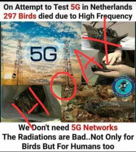 5G Network Hoax